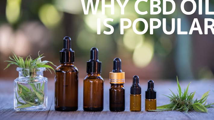 CBDオイルが【人気の理由】天然成分で健康的な心とカラダを目指してみませんか?メリデリや注意点など
