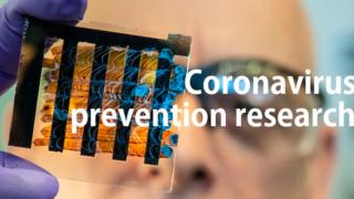 新たな研究結果!CBDでコロナウイルス感染を予防できる可能性が?!