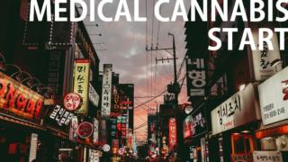 韓国で「医療大麻」が導入!東アジア初の合法化、その実情に迫る!