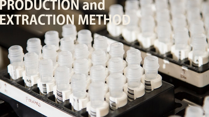 【製法と抽出方法】CBDはその種類によって効果に違いが!CBDの代表的な3つの製法と2つの抽出方法をご紹介します。