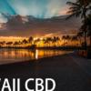 ハワイでマリファナが合法に?!ハワイでのCBDや医療大麻事情についてご紹介します。