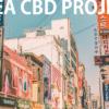 韓国でCBD国内生産目指す!法改正に特区制定と・・・国をあげての一大プロジェクトが発足しました。